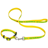Dog Leash and collar with sewn on satin ribbon